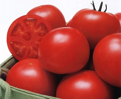 20170616-tomatomato.jpg